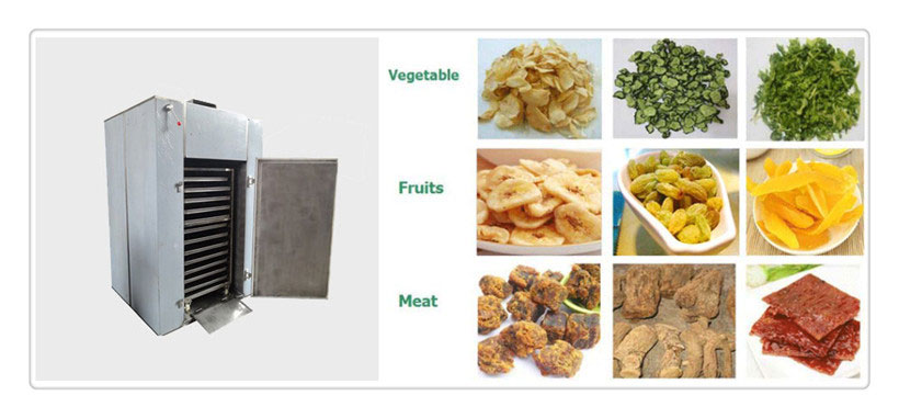 small hot air food dryer machine with factory price