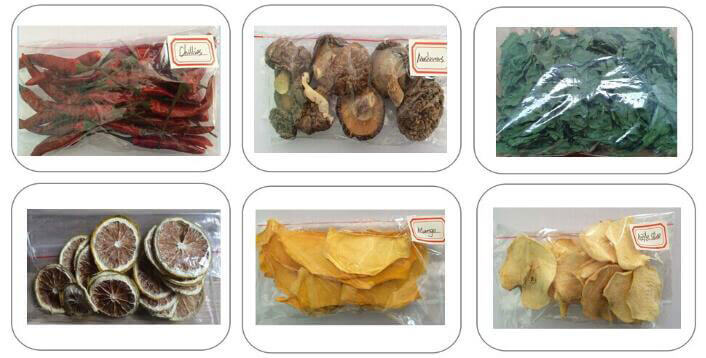 dried vegetables fruits made by single door hot air dryer