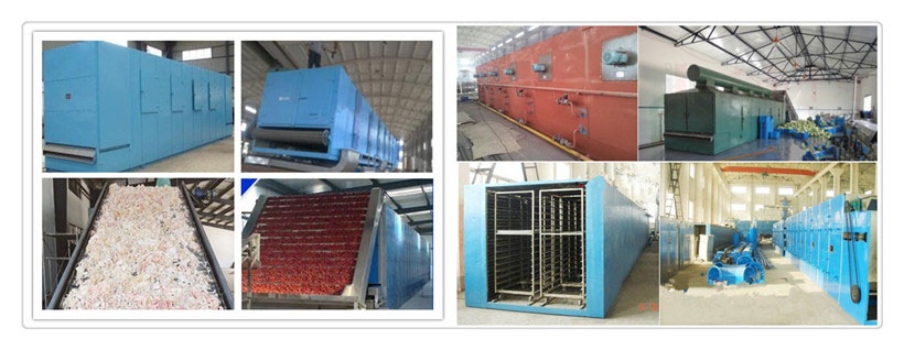 mesh belt food drying machine for sale