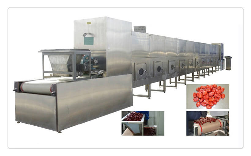 microwave vegetable drying machine for sale
