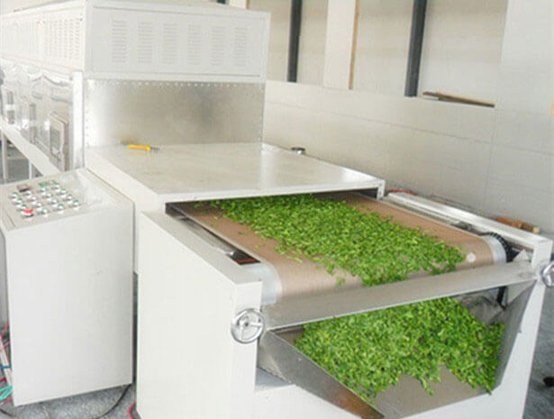 tea drying processs of microwave dryer
