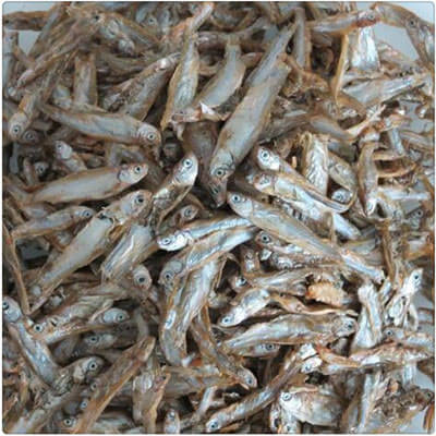 solution for Bangladesh fishes drying industry