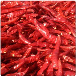 How to Dry Chillies by Hot Air Circulation Oven